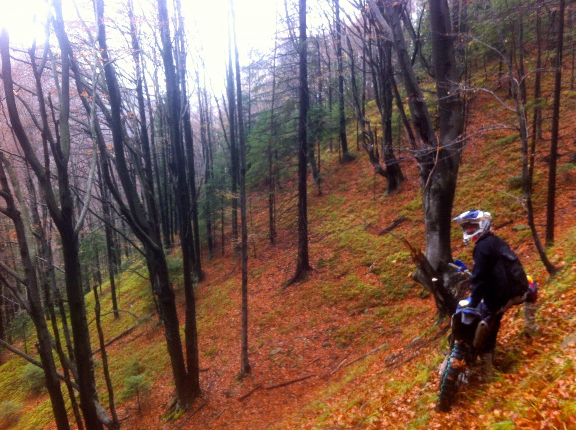 Efterår i Rumænien